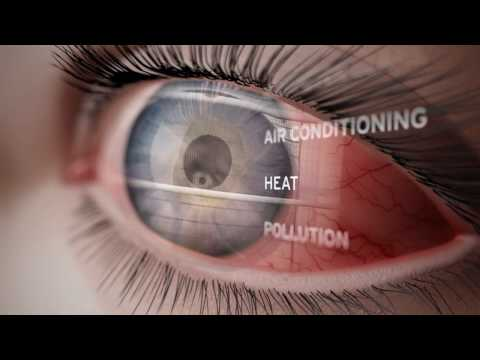 A Journey Through the Human Eye: How We See