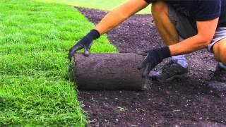 931-551-5299 | Local Lawn Service Professional Murfreesboro