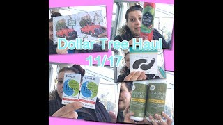 DOLLAR TREE Haul 11/17! More fun finds!