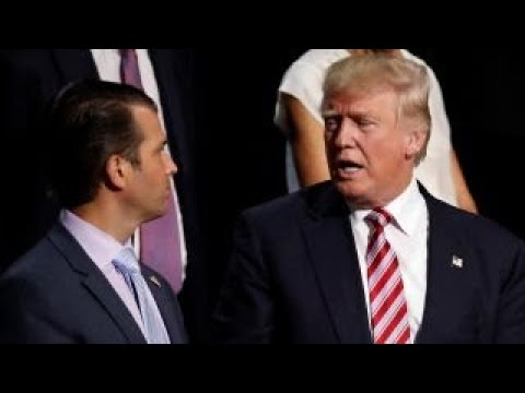 Report: Trump crafted son's statement about Russia meeting