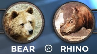 MAMMAL March Madness!