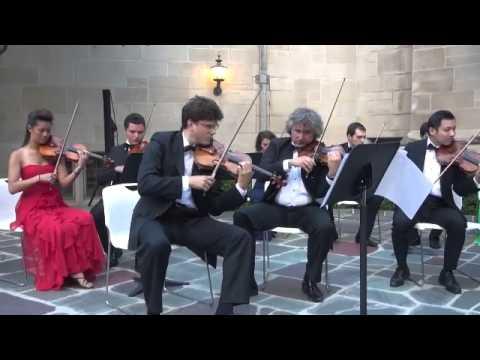 Dvorák-Serenade In E Major, Op. 22-V. Finale-iPalpiti / Eduard Schmieder