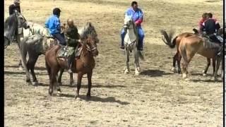 Эл-Ойын 2008(скачки, объездка лошадей)