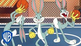Looney Tunes Cartoons | Basket Bugs   | WB Kids