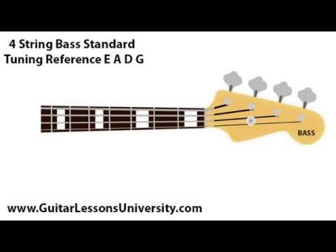 4 string bass guitar standard tuning reference