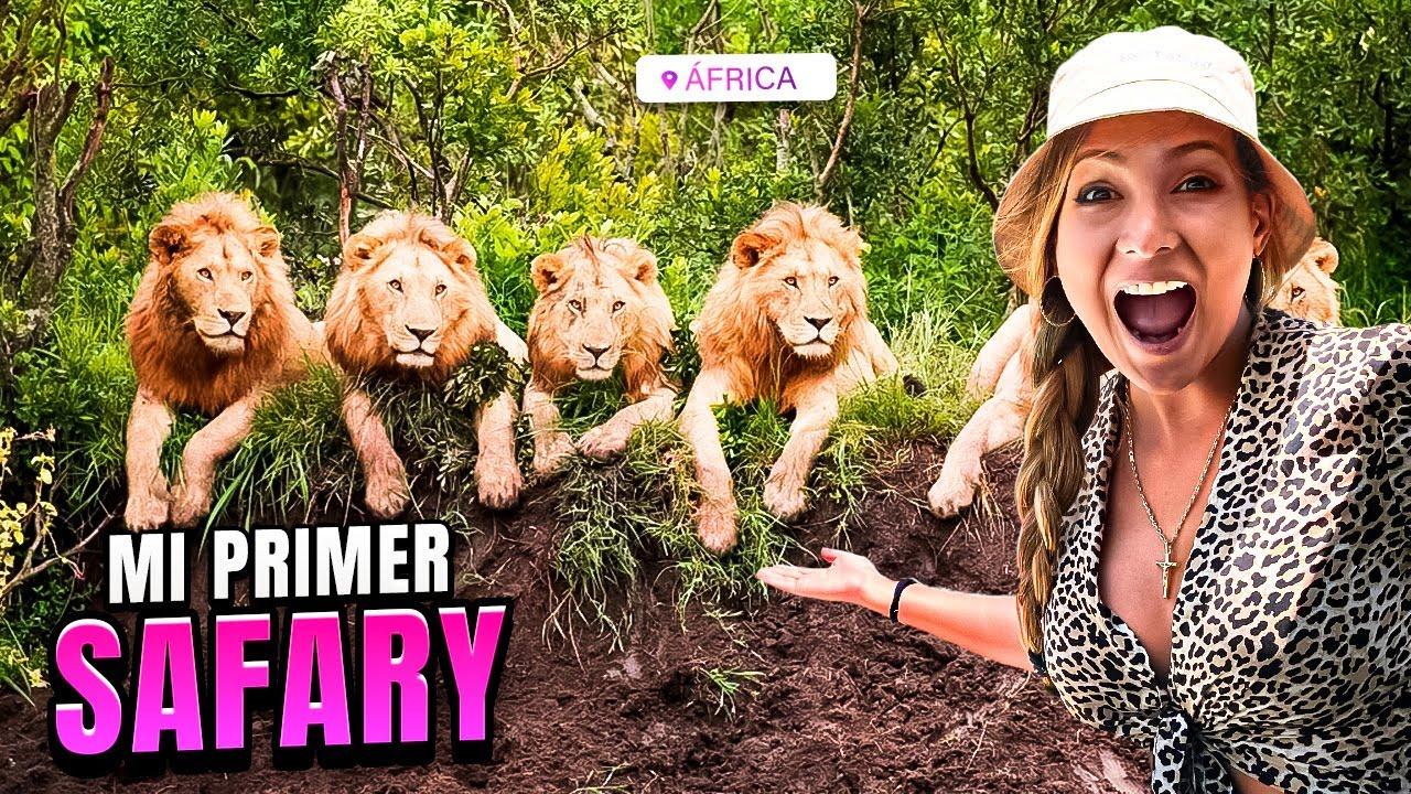 MI PRIMER SAFARI EN ÁFRICA - Leones devoran Jabalí   África Vlog #2
