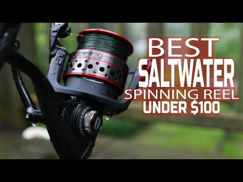 PENN FIERCE SALTWATER SPINNING REEL REVIEW - UNDER $ 100