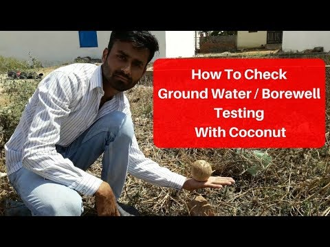 #Borewell How To Check Ground Water Testing With Coconut | Borewell Drilling | Tubewell