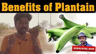 வாழைக்காய் பயன்கள் | Benefits of Plantain | Esh Health Tips