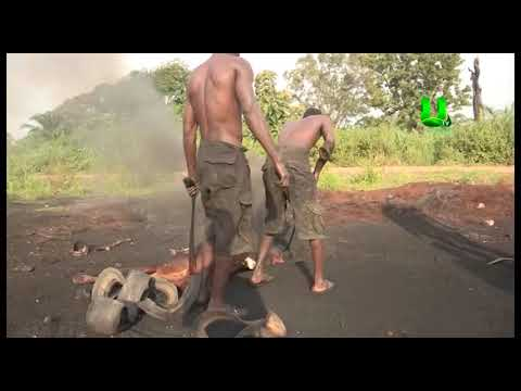 Special report on meat processing in Ghana
