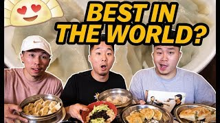 BEST CHINESE DUMPLINGS IN THE WORLD!? Northeast Dongbei Region | Fung Bros