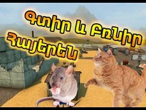Найти и догани #1 Tanki Online Armenia/Հայերեն