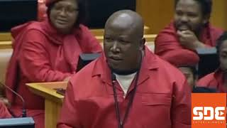 Seven instances Julius Malema shocked the world
