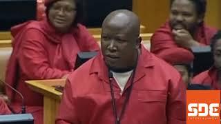 Seven instances Julius Malema shocked the world