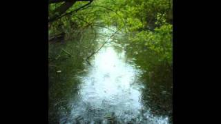 Drudkh - Only the Wind  Remembers / Smell of Rain
