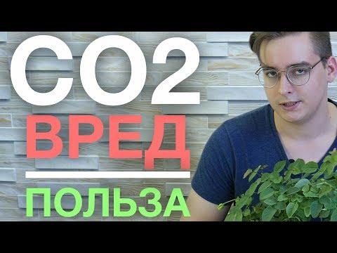 Осторожно, CO2 / Почему хочется спать днем?