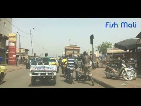 "Bamako, Mali, Part 2 ""Fish Mali"" City Life # 24"