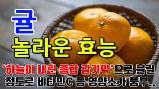 귤의 놀라운 효능 8가지 & 부작용 / 비타민C…