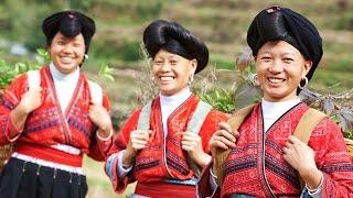 5 reasons you will love china