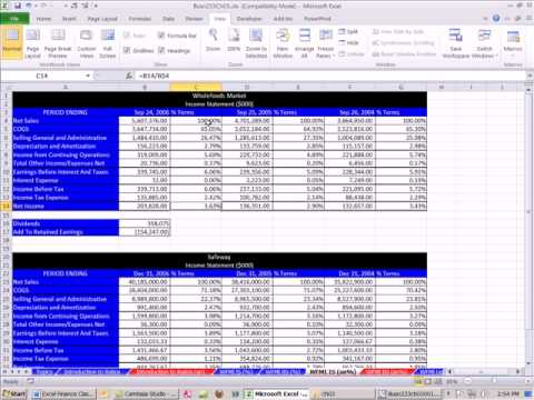 Excel Finance Class 15 Common Sized Financial Statements - YouTube - common size income statement template excel