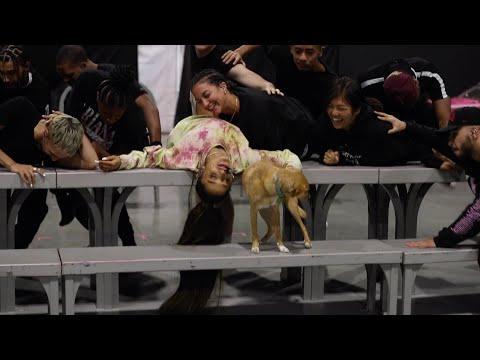 Смотреть клип Ariana Grande - Lollapalooza
