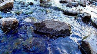 Вода Течет Между Камней. Футаж Вода Течет. Красивая Вода Между Камней Видео. Футажи для видеомонтажа