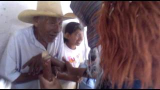 Corralillo galera y sus sones  tradicionales  originales 01 / 11 / 2011.