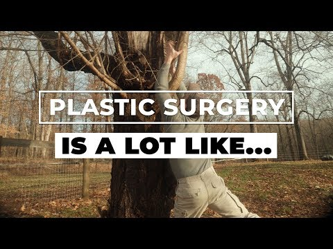 Plastic Surgery Is A Lot Like...