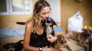 Bali Dog   Franci documentary