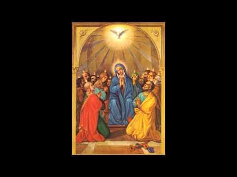 Homélie de la messe de la Pentecôte (Jn 15, 26-27 ; 16, 12-15), par le Père Eric