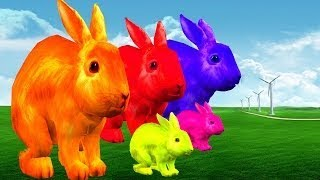 Learn Colors With Colorful Rabbits || Kids Songs vesves 3D Animation English Rhymes For Childre