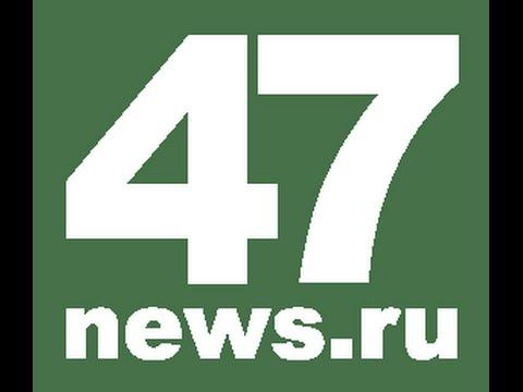 Чупокабра поселок Важино видео 47news.ru