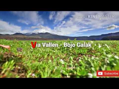 Via Vallen - Bojo Galak ( Video Lirik Terjemahan Indonesia ) Cover