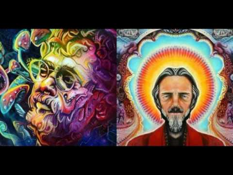 How The Government Is Controlling us Terence Mckenna