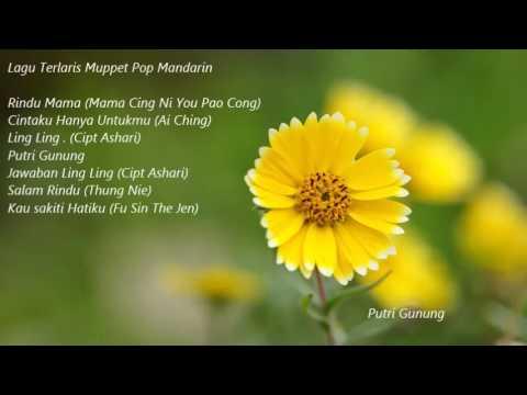 Pop Mandarin Indonesia Muppet Terbaik