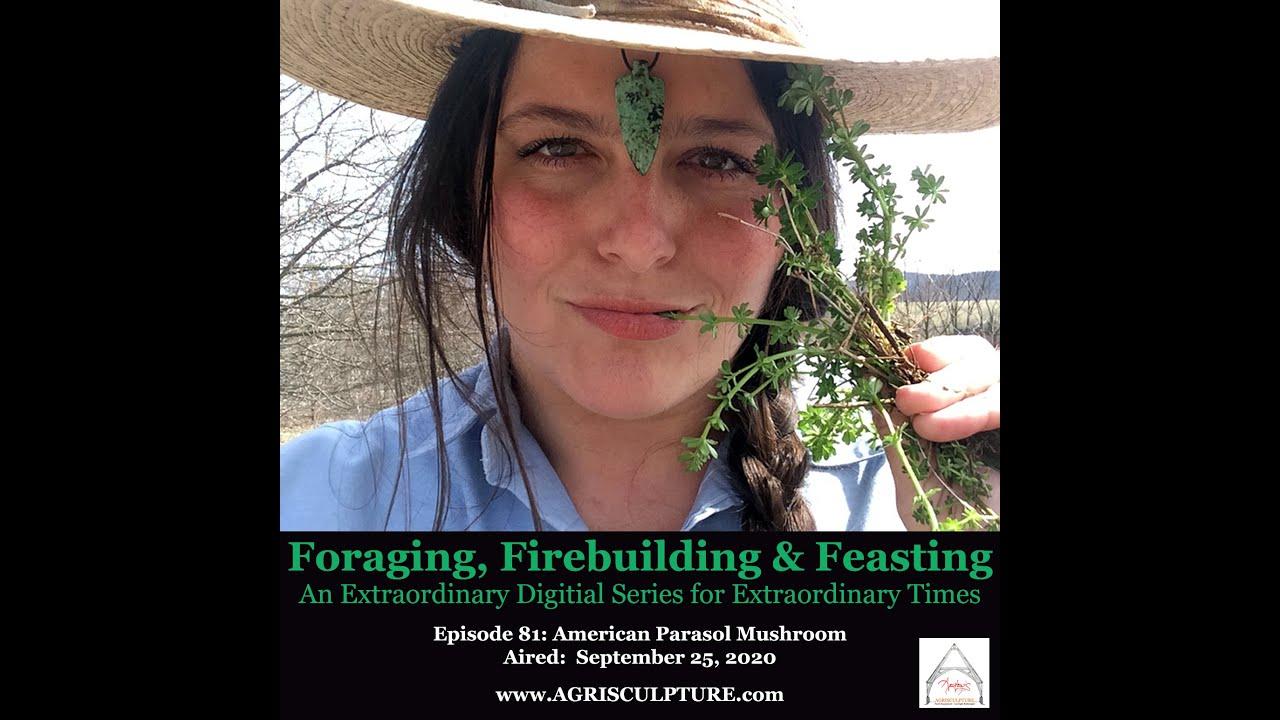 """FORAGING, FIREBUILDING & FEASTING"" : EPISODE 81 - AMERICAN PARASOL MUSHROOM"