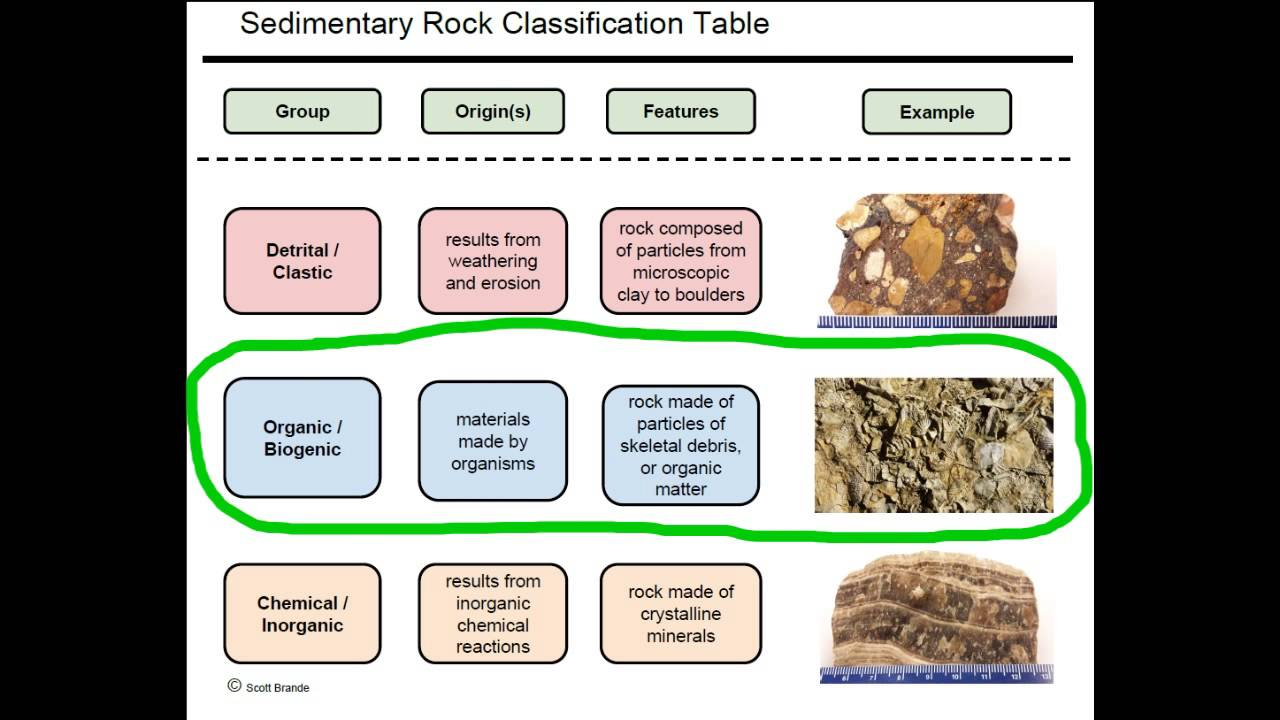 Sr1b A Classification Of The Common Sedimentary Rocks Youtube