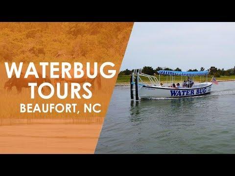 Waterbug Tours in Beaufort  North Carolina Weekend  UNC-TV