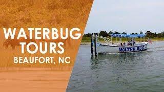 Baixar Waterbug Tours in Beaufort   North Carolina Weekend   UNC-TV