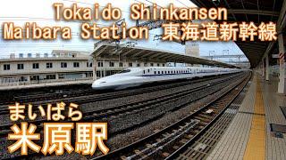 東海道新幹線 米原駅を探検してみた Maibara Station. Tokaido Shinkansen