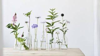 4 Pinterest-Worthy DIY Flower Decorations From Oh Joy's Joy Cho
