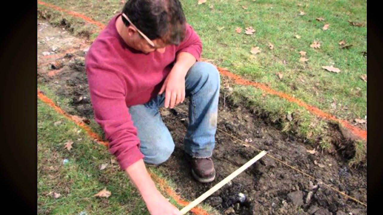 Как выращивать капусту белокочанную правильно