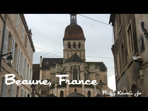 Visit of Beaune, France