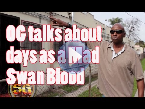 Edmund talks about growing up as a Mad Swan Blood during most violent decade
