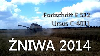 Żniwa 2014 ☆ Pszenica Ozima ☆ Fortschritt E 512 URSUS C-4011 ☆-Prace Polowe 2014