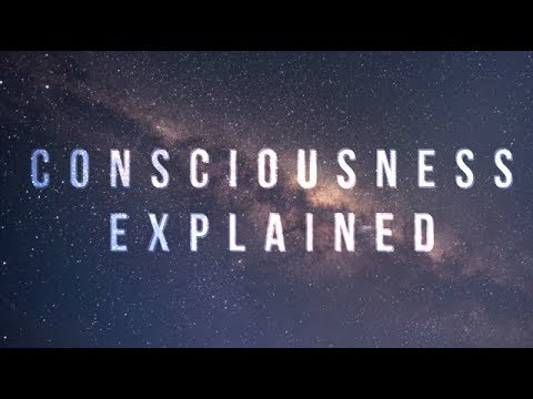 The Illusion Of Consciousness EXPLAINED (Why Does Seeing Fee