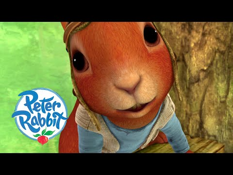 #Autumn 🍁  @Peter Rabbit - Tasty Radishes & Endangered Squirrels   Cartoons for Kids
