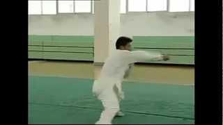 Zhuang Style Southern Fujian Boxing