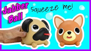 Welcome Jabber Pug and Jabber Chihuahua!