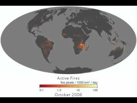 The Global Pulse Of Fire